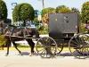 Amish-Indiana-041