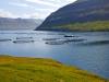 Faroerne-064