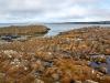 Island-nord-037