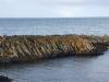 Island-nord-038