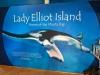 Lady_Elliot_Island-032.jpg