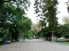Mendoza-0544