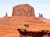 Navajo-Nation-057