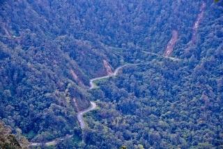 Queensland-024.jpg