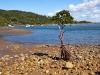 Queensland-011.jpg