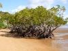 Queensland-016.jpg