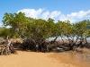 Queensland-017.jpg